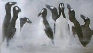 Ilustración alca gigante (Pinguinus impennis)