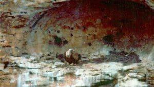 Nido de un Buitre Leonado (Gyps fulvus) en la naturaleza