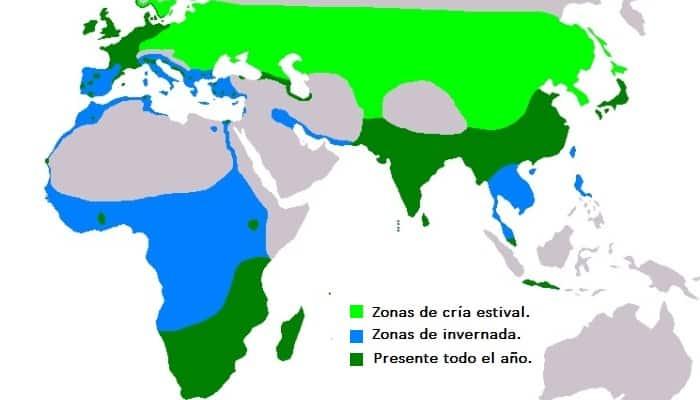Distribución de la Garza Real (Ardea cinerea)
