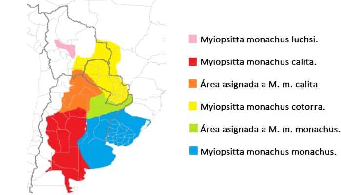Mapa de las subespecies de Myiopsitta monachus.