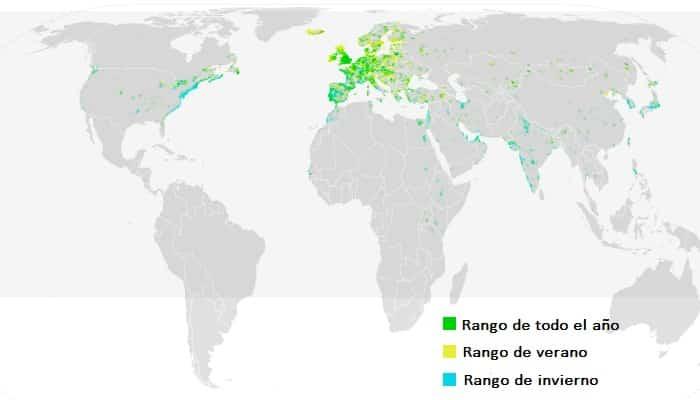 Distribución de la gaviota reidora