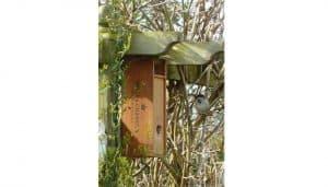 Casa nido de un Gorrión Común (Passer domesticus)