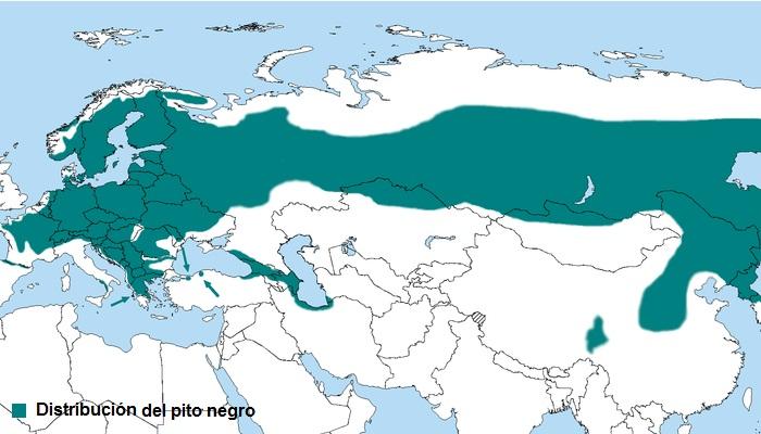 Mapa de distribución del Pito negro