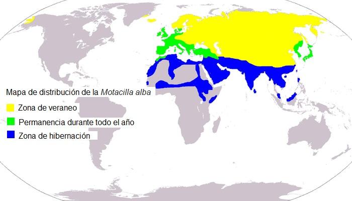 Mapa de distribución de la Motacilla alba
