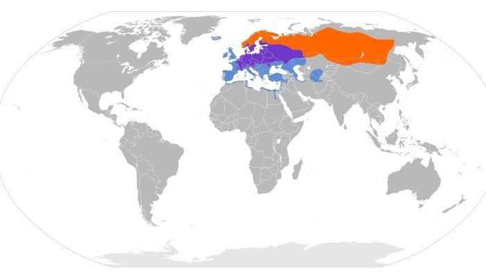Distribución del zorzal real (Turdus pilaris)