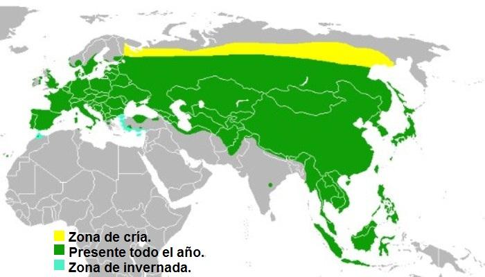 Distribución del Gorrión Molinero