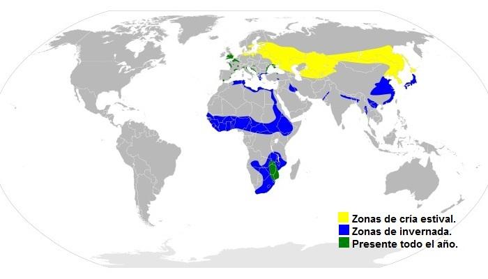 Ubicación geográfica del avetoro común (Botaurus stellaris)
