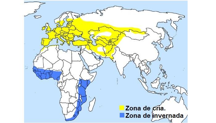 Distribución del chotacabras gris (Caprimulgus europaeus)